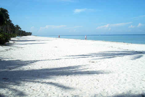 THE WHITE SAND BEACHES OF FLORIDA