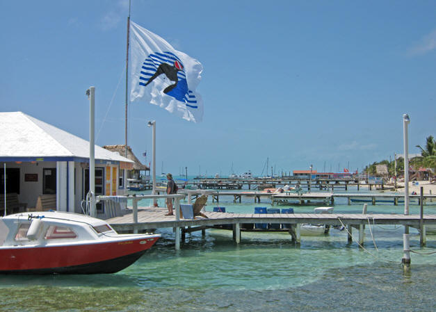 Anyone for swimming in a harbor? Belize