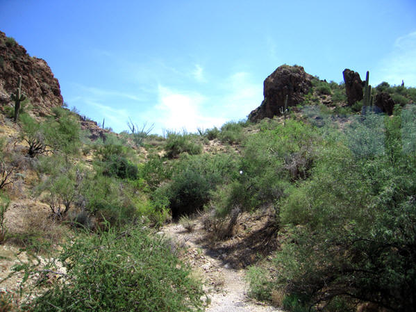 A trail up into the Arizona dessert hills, Canyon Lake, AZ