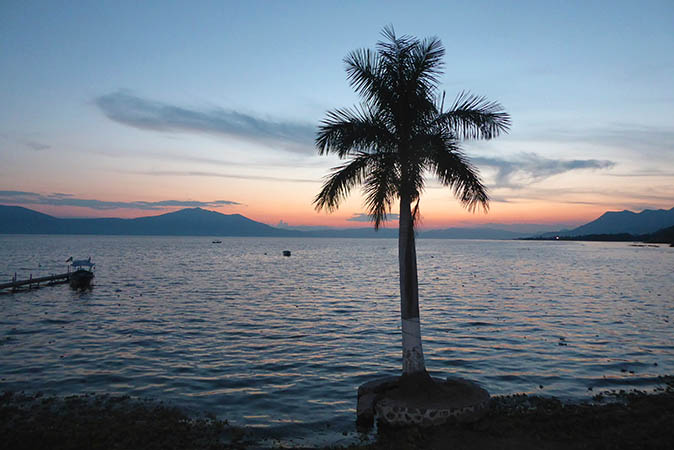 Beautiful sunset over Lake Chapala, Mexico with Palm tree in the center