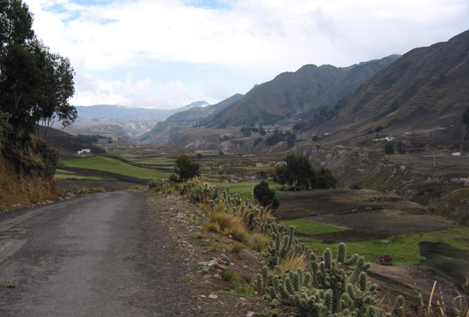 BIODIVERSE DRIVE THROUGH THE ANDES