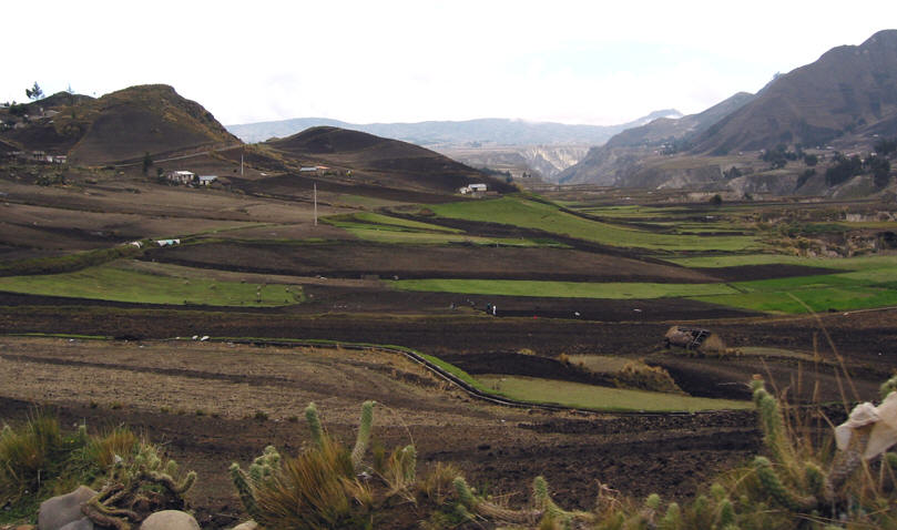 RICH BLACK SOIL FOR FARMING, ANDEAN COUNTRY