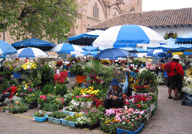 THE FLOWER MARKET IN OLD TOWN, CUENCA