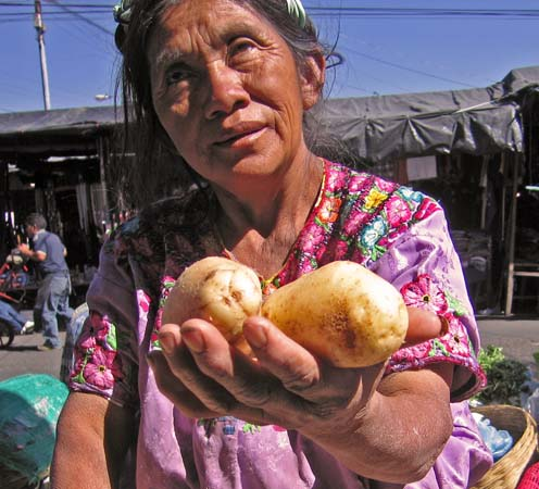 A vendor offers potatoes
