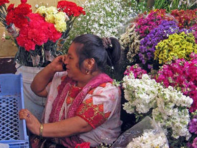 Maya woman on cell phone at market