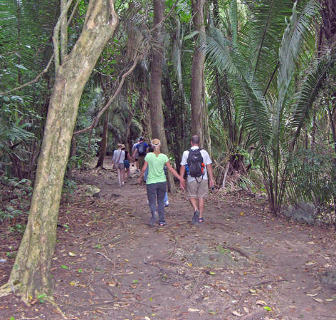 Leisurely walk through the rainforest at Lamanai, Belize