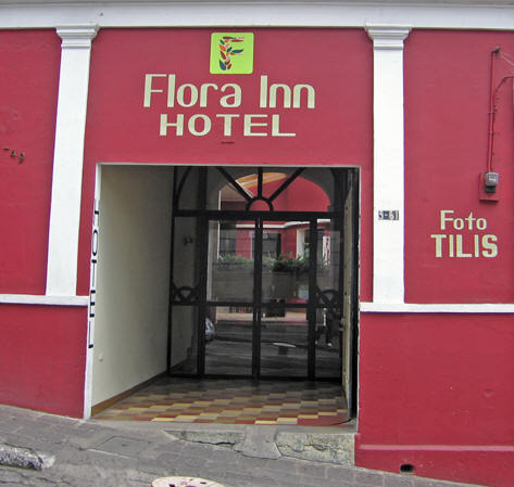 Flora Inn is a solid choice - clean, convenient, close to town